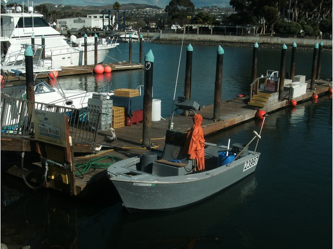 Boat, Dana Point, CA