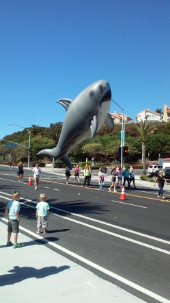 Festival of Whales, Dana Point