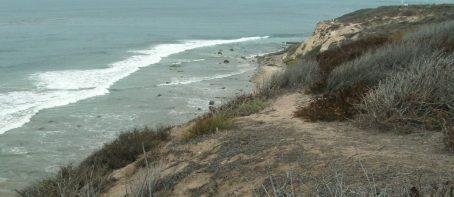 cropped-beach21.jpg
