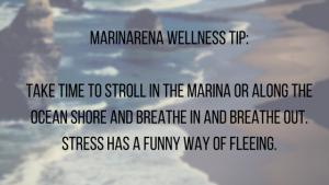 wellness_quote